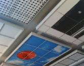 Suspended Ceilings & Drop-In Tile Ceilings